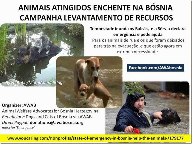 Animais-bosnia