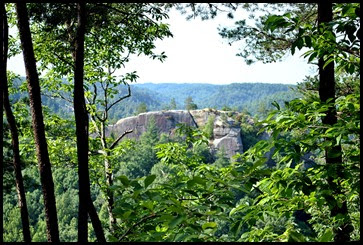 02d - Chimney Top Trail - view along the trail