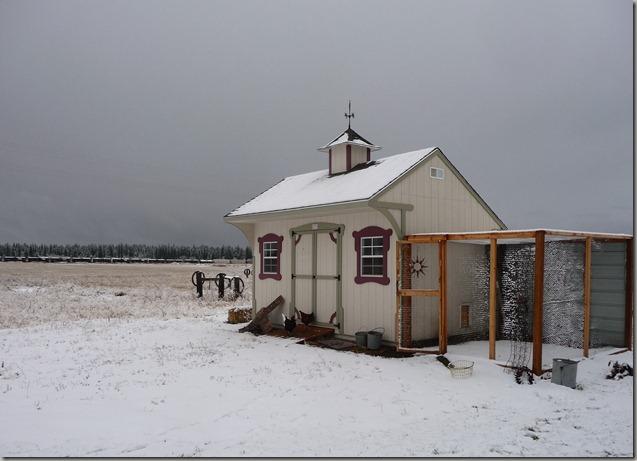 snow 039