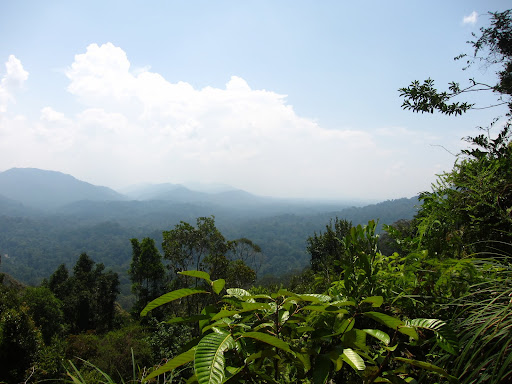 The scenic lookout at Bukit Terisek in Taman Negara.