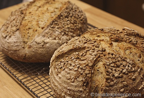 sunflower-seed-bread_1411