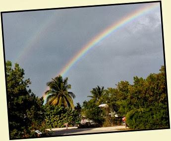 06 - Rainbow