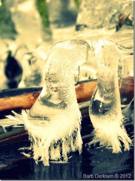 Barb Derksen Ice 2012  (21)