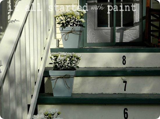 Spring porch daisies