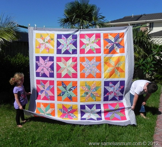 Starflower Quilt 1