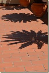 A 11 Shadow