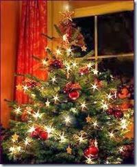 kerstboom[1]