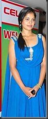 bindu-madhavi _sexy pic