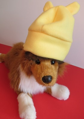 Doggy in pooh hat
