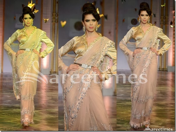 Neeta_Lulla_Peach_Net_Saree