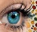 Gen Resesif Buta warna