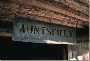 Auntsfield2