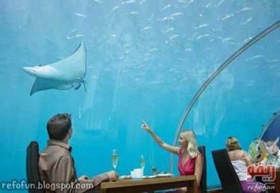 underwaterresataurant-refofun