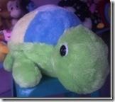 Jumbo Turtle