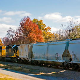 Fall Train by Nick Hartman - Transportation Trains ( nature, autumn, fall foliage, beautiful, trees, leaves, landscape )