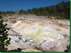 Norris Geyser Basin (245)