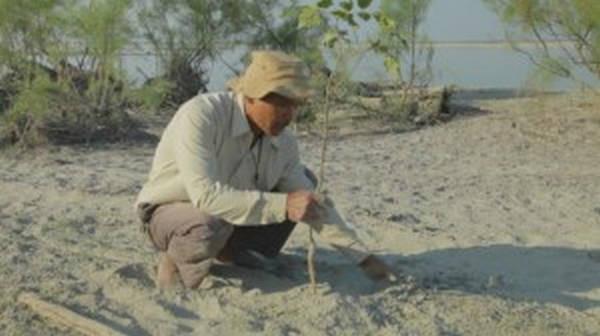 8- O homem que plantou uma floresta sozinho