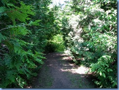 4681 McRae Point Provincial Park path beside our motorhome down to Lake Simcoe