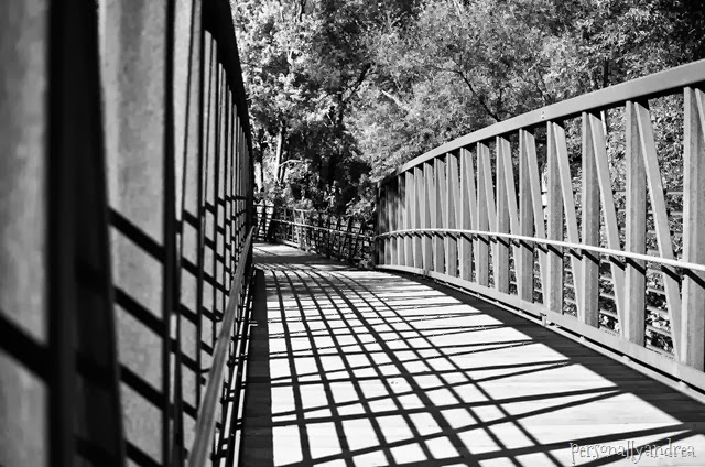meadowvale black and white_001