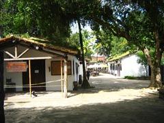 Santos 365