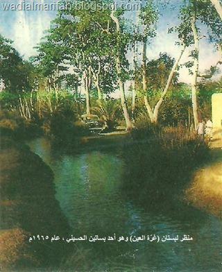 بستان غرة العين ــ الحسيني لحج عام 1965