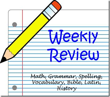 weekly review graphic 2