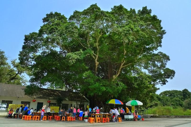 Lai Chi Wo Village [荔枝窩村]