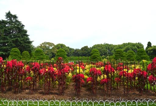 Glória Ishizaka -   Kyoto Botanical Garden 2012 - 120