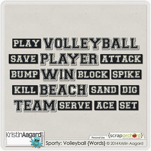 _KAagard_SportyVolleyball_Words_PVW