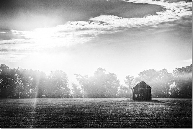 Barn the Mist-Edit