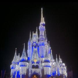 Cinderella's Castle by Brent Hagie - Instagram & Mobile iPhone