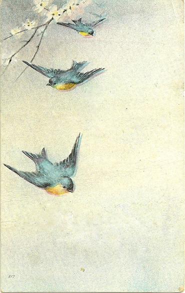 birdbirthdaycard1