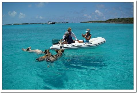 Staniel Cay, Bahamas 071