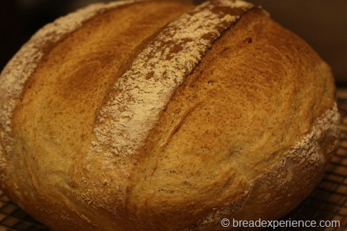 shepherds-bread_0025