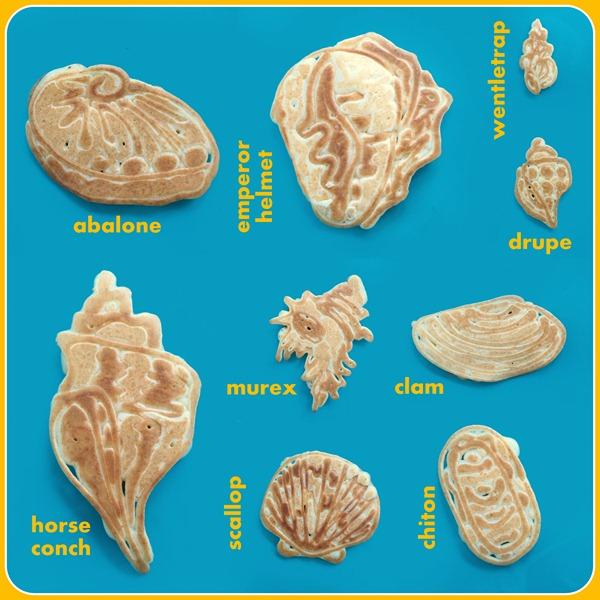 28 - 8-12-12 shells