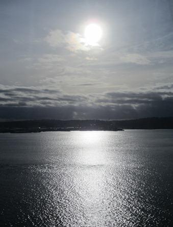 a bit of sun (2)