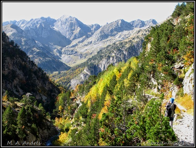 Llena Cantal 158