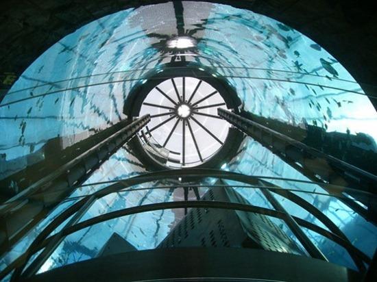 Cylindrical Aquarium 07