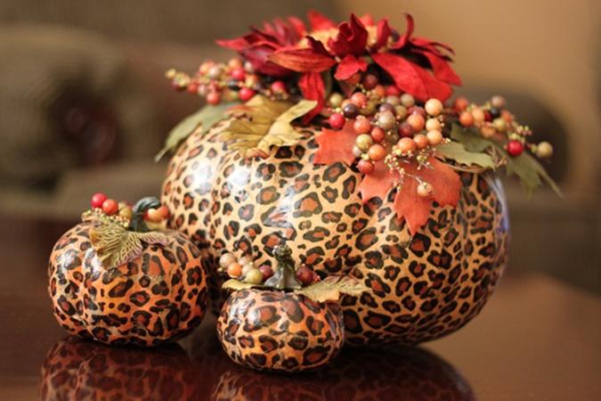 leopard pumpkins