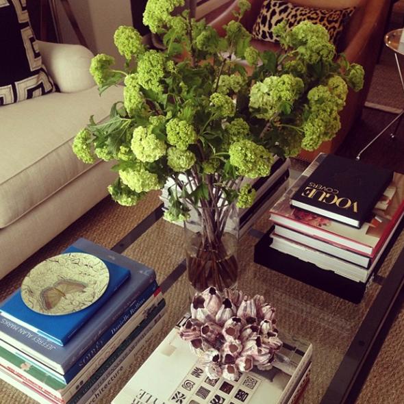 Paloma Contreras Design | Vibirnum | Barnacle Cluster | Greek Key | Leopard
