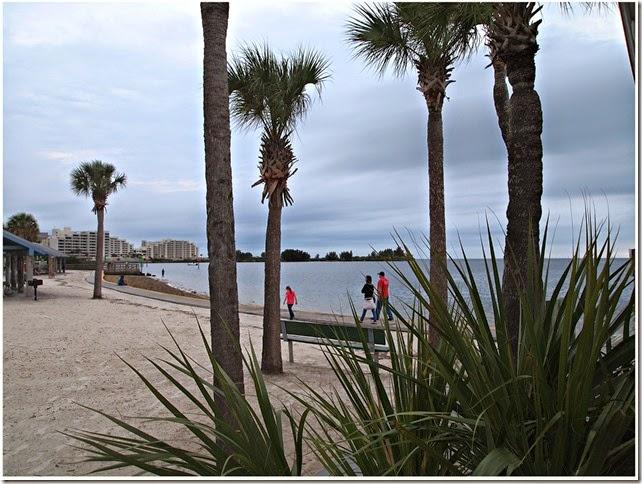 Florida Gulf Shot