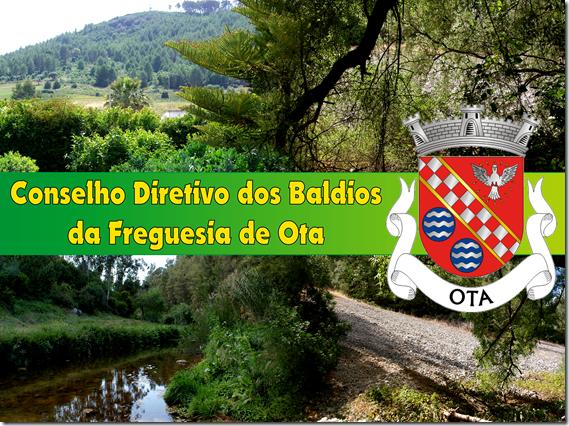 CDBFO (8)