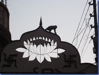 india 2011 2012 193