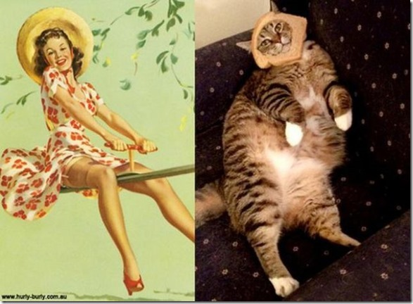 cats-pinup-models-2