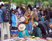 Occupy wall street hippies