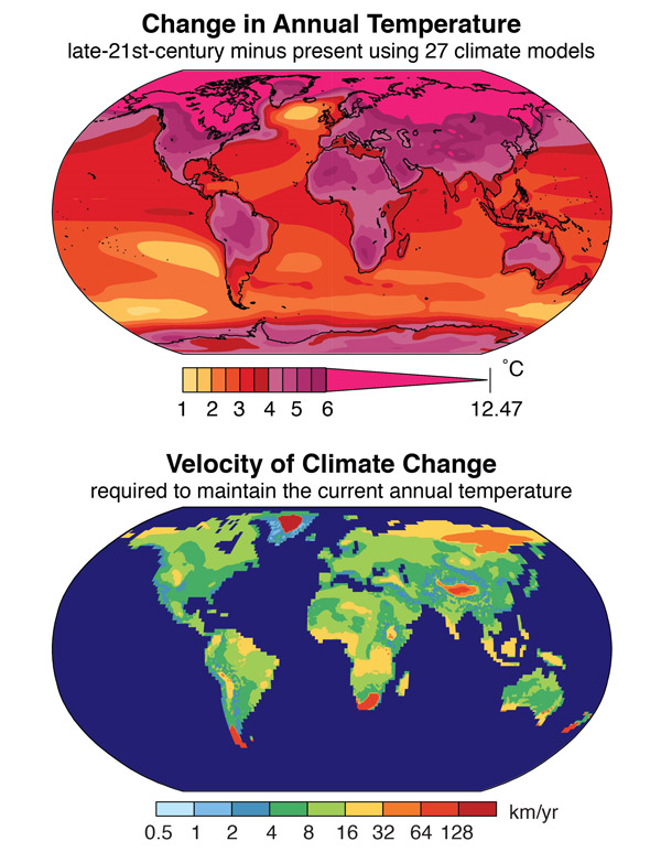 Top: The change in annual temperature projected for the late 21st century using simulations from 27 global climate models. The change is calculated as the 2081-2100 mean minus the 1986-2005 mean. Bottom: The velocity of climate change required to maintain the current annual temperature should the late-21st-century climate change occur. The velocity is calculated foreach location by identifying the closest location in the future climate that has the same annual temperature as the starting location has in the present climate. Graphic: Noah Diffenbaugh