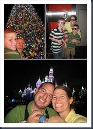Disneyland11-14-12 (722x1024)