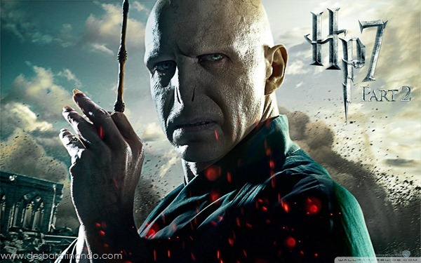 harry-potter-and-the-deathly-hallows-wallpapers-desbaratinando-reliqueas-da-morte (3)