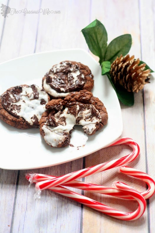 peppermint-patty-cookies-christmas-cookies-recipes-4
