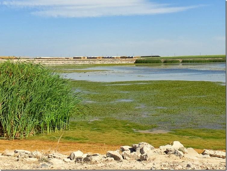 Dry Lakes 1